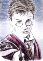 Harry Potter mini-portrait PSC by whu-wei