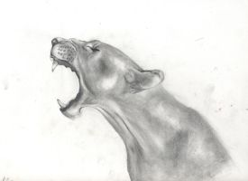 Roaring Lioness by FrenchTrotter