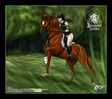 Cross-Country at SBS by Baringa-of-the-Wind
