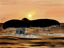A Whale of a Tale by Giselle-M