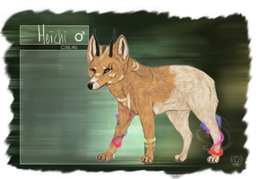Heichi - Character Reference by StupidRainbowFox