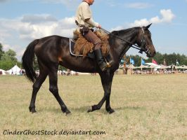 Hungarian Festival Stock 050 by CinderGhostStock