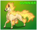 The Red Barn: Gunnar the Ponyta Ref by Cattensu