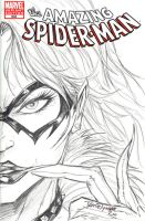 Black Cat Sketch cover by jamietyndall