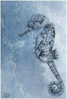 Seahorse by RayneColdkiss