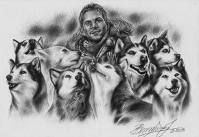 Eight Below by Vira1991