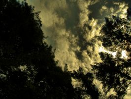 Nature_sky_dark_moody yellow by Aimelle-Stock
