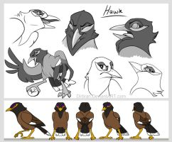 Hawk by Key-Feathers
