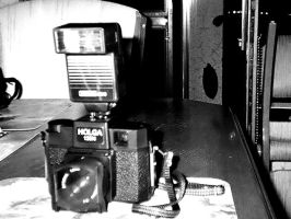 FLASH ME MY HOLGA by altergromit