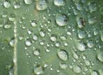 My-Stock - Droplets by my-stock