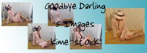 Goodbye Darling 4 by kime-stock