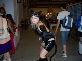 Ame Comi Catwoman - Otakuthon 2012 by J25TheArcKing