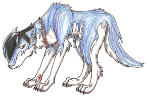 Eliot The Emo Wolf by Daisie2819