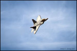 F-22 Raptor by mikesplanes