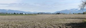 panorama extra: farmland 2 by destinydai