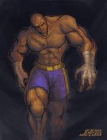 SFA3.FAC - Sagat by rook-over-here
