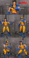 Marvel Universe Wolverine by Jin-Saotome
