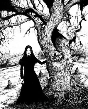 Witch Tree by MonsterMansion