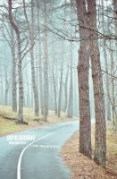 Lonely road by dipolgrodno