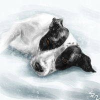 A friend's dog by Nyotah