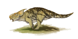 Style test - Pachyrhinosaurus canadensis by FabrizioDeRossi