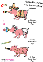 Rattle-Nosed Pig Species by TheWiseWeirdProphet