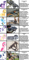 If the Mane Six (And More) went Gun Shopping... by zedef