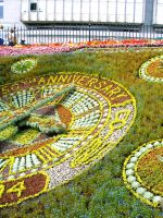 Flower Clock Part 1 by Fea-Fanuilos-Stock