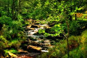 The Stream through the Woods - Paintography... by TheBaldingOne