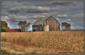 Elmvale Barn by Rebacan