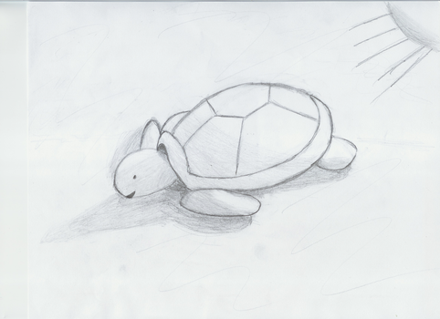 Turtle by beerpony