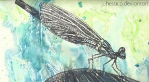 Dragonfly Rain by juhessica
