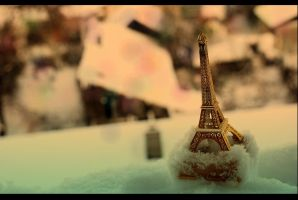miniature by anneeey