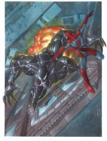Spider Man vs Venom by andrema