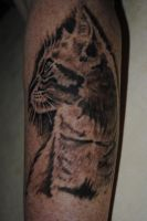 Cat tattoo 2 by IraW0lv