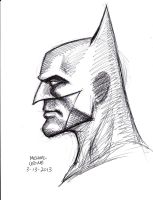 Batman Profile 3-13-2013 by myconius