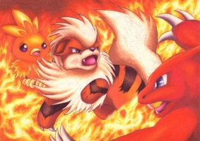 Fiery Battle by Cadaska