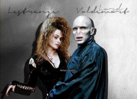 Bellatrix and Voldemort by AkilajoGraphic