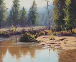 Sandy Bank Coxs River by artsaus