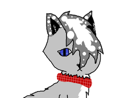 Epic the Cat! by LaiseTheChip