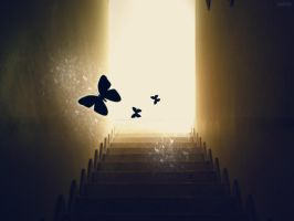 stairway to heaven. by cellee