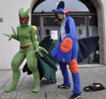 animuc2013: Sceptile and Swampert by Ikarooz
