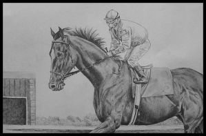 Race horse by cassiestep202