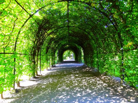 Journey Under the Green Arbour - Nature's Shadows by Cloudwhisperer67