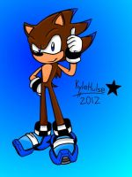 Kyle The Hedgehog 1 by kyleultra128