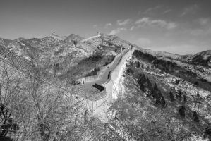 The Great Wall by girl
