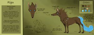 Official Rigu Reference by Weavrrcat
