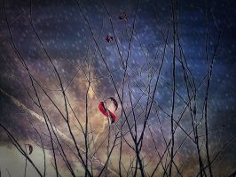 branches in the sky +edit+ by mysteriousfantasy