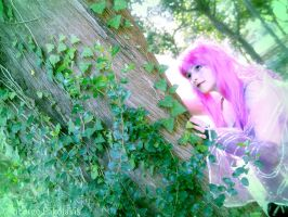 Looking For My Brother And Sister Fairies by Sylvia-Crystal