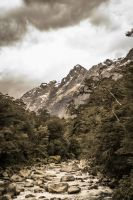 on the way to Milford Sound by horse and cart???? by stosser01